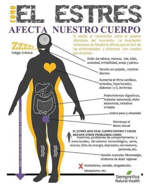 Como afecta el estrés a nuestro cuerpo#infografia #infographic #health | Sóc Multidisciplinar - Ara toca Web 2.0 | Scoop.it