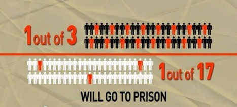 What are your chances of going to prison? | SocialAction2015 | Scoop.it