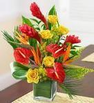 Birthday Flowers delivery USA | Gorgeous Flowers Bouquets and more | Scoop.it