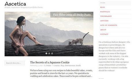 24 Free WordPress Portfolio Themes - SloDive | Template & Webdesign | Scoop.it