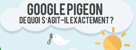 Comment référencer son site sur Google après Pingouin et Panda ? - Weddict | SEO | Scoop.it