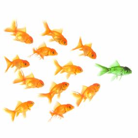 How to Create a Leadership Development Program | leadership development | Scoop.it