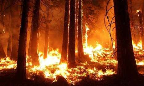 Wildfires emit more greenhouse gases than assumed in California climate targets | Sustain Our Earth | Scoop.it