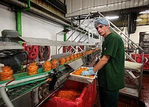 Chez Bonduelle, des fermes pilotes expérimentent l'agriculture de demain | alternatives agricoles | Scoop.it