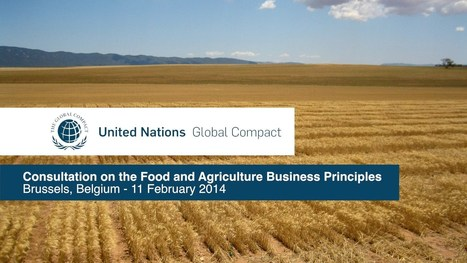 ▶ UN Global Compact: Consultation on the Food and Agriculture Business Principles, Brussels - YouTube | Chimie verte et agroécologie | Scoop.it