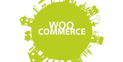 30 Best WooCommerce Extensions you need to buy | Reviews it | Scoop.it