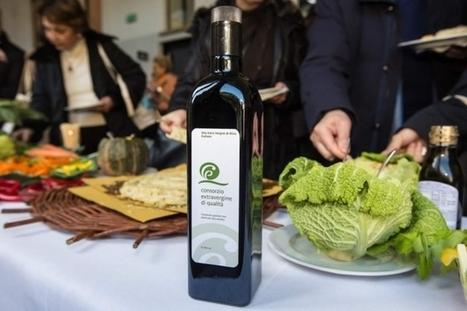 Anno zero per gli oli da olive | Olio Extravergine Italiano Costa | Scoop.it