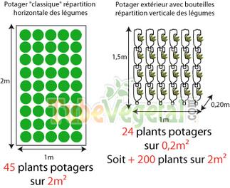 Réaliser un jardin vertical extérieur avec des bouteilles en plastiques - TubeVegetal | Vertical garden | Scoop.it