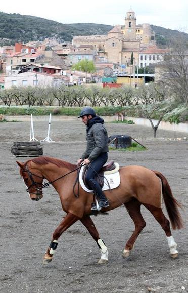 Albert Hermoso, el encantador de caballos | Caballo, Caballos | Scoop.it