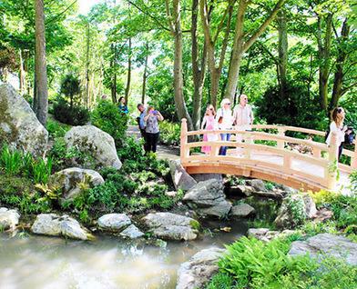 Memorial gardens in Ireland celebrate eventful life of Lafcadio Hearn - Asahi Shimbun | Zen Gardens | Scoop.it