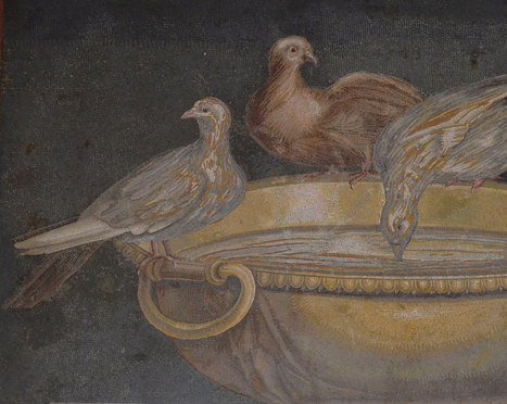 Art and sculptures from Hadrian's Villa: Mosaic of the Doves | Smash!Mosaics | Scoop.it