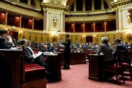 Le Sénat améliore le projet de loi sur la biodiversité | Idées responsables à suivre & tendances de société | Scoop.it