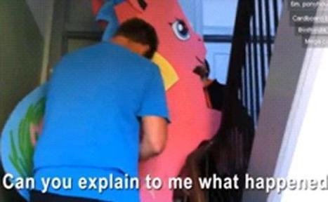 Ivres, ils volent un poney rose et voient son propriétaire débarquer | Le monde est flou | Scoop.it