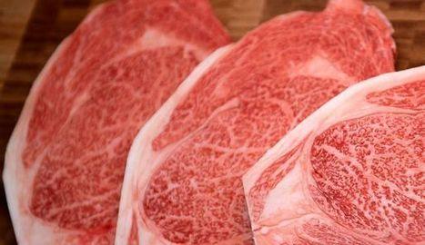 La viande maturée, nouvelle star des rayons boucherie des supermarchés? | Animal Nutrition Spotlight | Scoop.it