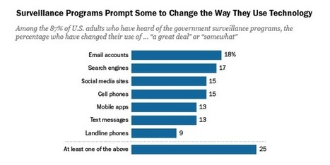 Americans' Privacy Strategies Post-Snowden | Web 2.0 et société | Scoop.it
