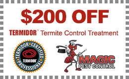 Termite Treatment Phoenix AZ, Termite Control Gilbert, Chandler, Mesa | Controlling All The Pest In Town | Scoop.it
