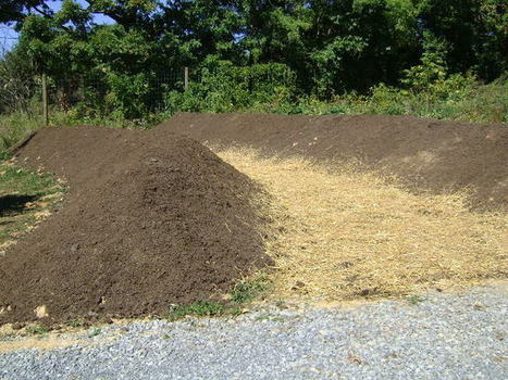 How to Build and Plant Large Hugelkultur Berms | Eco Village | Scoop.it