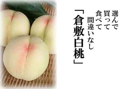 倉敷白桃|岡山県倉敷市より最上級の美味しい桃を全国にお届けします | harumi_ueda02 | Scoop.it