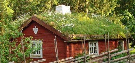 Toiture végétalisée à créer soi-même | Conseil construction de maison | Scoop.it