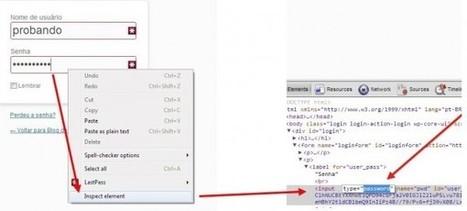 Cómo descubrir las contraseñas web ocultas por asteriscos | Recull diari | Scoop.it