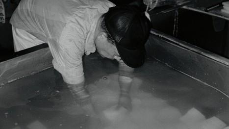 John Maeda: painting by pixel | Arts visuels: questions & pratiques d'aujourd'hui | Scoop.it