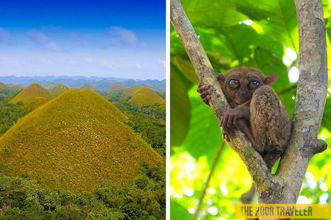 The Budget Travel Guide to BOHOL, PHILIPPINES | Anda Bohol | Scoop.it