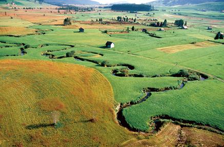 Biodiversité : le sol s'enrichit, la nature s'appauvrit - Office fédéral de l'environnement Suisse | Chimie verte et agroécologie | Scoop.it