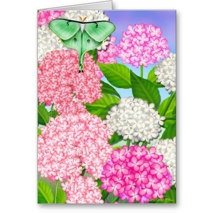 Pink Hydrangea Garden Flowers Card from Zazzle.com   Artistic Greeting Cards   Scoop.it