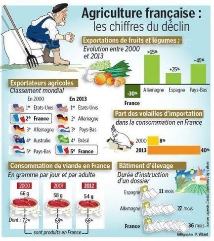 Ce malaise qui déprime les paysans français | Questions de développement ... | Scoop.it
