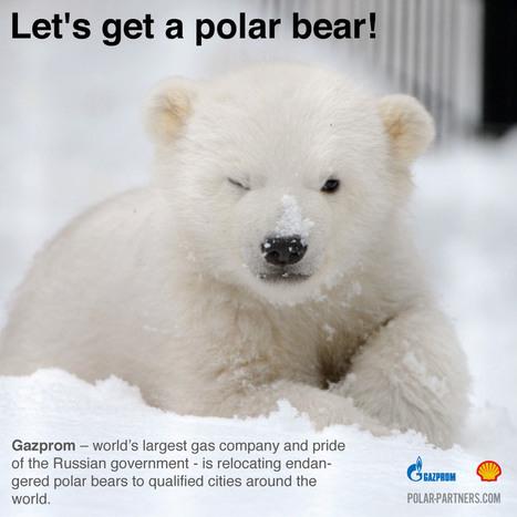Polar Partners | Artful Interventions | Scoop.it