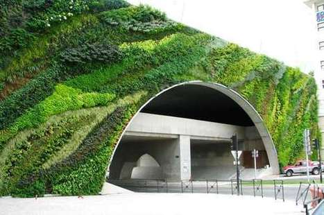 Going Vertical: The History of Green Walls - Landscape Architects Network | GreenIssues | Scoop.it