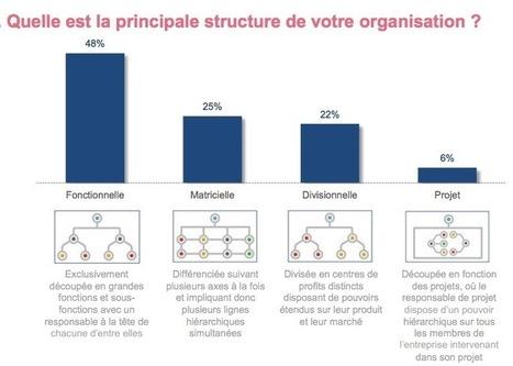 STRUCTURES ORGANISATIONNELLES - La hiérarchie pyramidale reste la norme dans les entreprises | MANAGEMENT des ENTREPRISES | Scoop.it