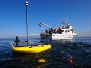 Oil Giant To Launch Fleet Of Ocean-Going Robots   Robots and Robotics   Scoop.it