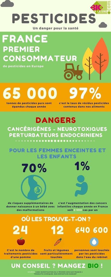 Pesticides: Comment s'en protéger ?   Phytosanitaires et pesticides   Scoop.it