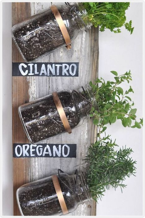 Grow herbs in style with some old wood and mason jars. | Vintage Living Today For A Future Tomorrow | Scoop.it