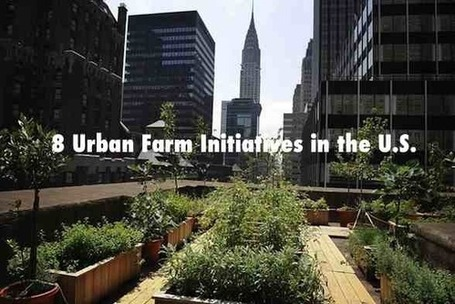 Eight Innovations In Urban Farming in the United States | Food Tank | Vertical Farm - Food Factory | Scoop.it