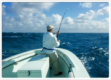 Fishing Is fun With Miami offshore fishing charter | Miami fishing charter | Scoop.it