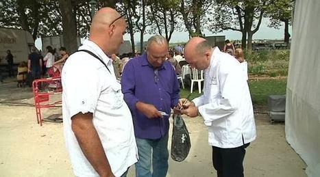 Toqués d'Oc : 15 chefs pour 2200 gourmets à Montpellier - Thau Tv | Fête de la Gastronomie 23 au 25 sept. 2016 | Scoop.it