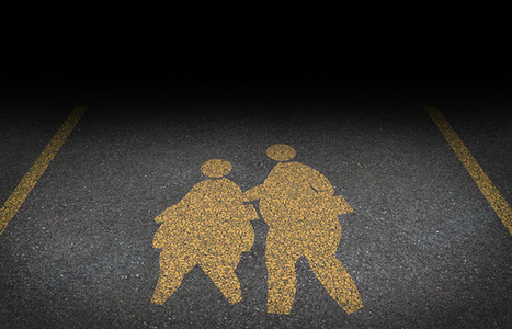 The Elusive Link Between Poverty and Obesity | technology for the environment | Scoop.it