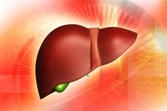Roche Pharmaceuticals Confirms Organovo Bioprinted Liver | Pharmaceutical Information | Scoop.it