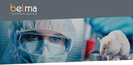 BELMA Technologies sera présent au ENBDC WORKSHOP, à Weggis en Suisse | WBC Incubator | Sociétés accompagnées par WBC - Actus | Scoop.it