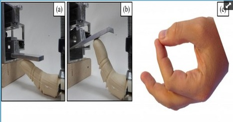Scientist Designs Bio-Inspired Robotic Finger That Looks, Feels and Works Like the Real Thing | Amazing Science | Scoop.it