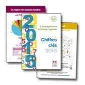 ChloroFil : Chiffres clés | pédagogie et numérique | Scoop.it