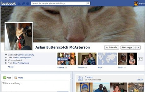 All Fake, Duplicate and Cat Facebook Profiles Will Be Deleted | Business 2 Community | Djalem Social Media | Scoop.it