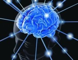 The Era of Memory Engineering Has Arrived   Energy Health   Scoop.it