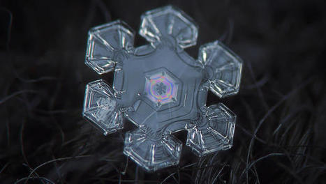 Amazing Closeups Of Snowflakes Give A Little Glimpse At How Awesome Nature Is | Real Estate Plus+ Daily News | Scoop.it