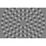 Headache-Inducing Spiral Illusion Explained   The brain and illusions   Scoop.it