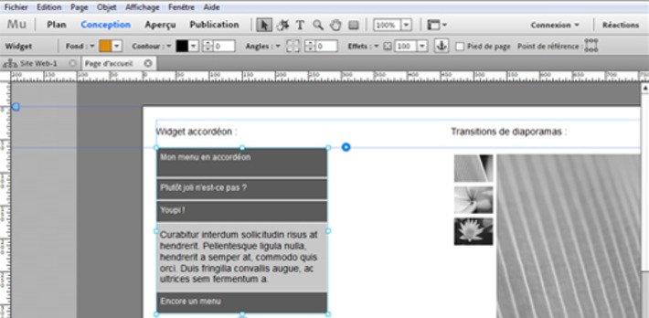 Adobe Muse est disponible en français | TIC et TICE mais... en français | Scoop.it