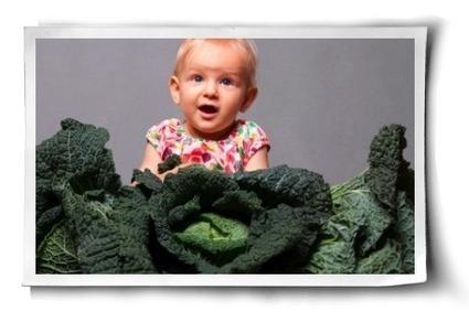 Kale: Health Benefits | Healthy Whole Foods | Scoop.it
