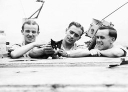 Simon The Cat -The Youngest Ever Naval Crew Hero of HMS Amethyst | Catnip Daily | Scoop.it
